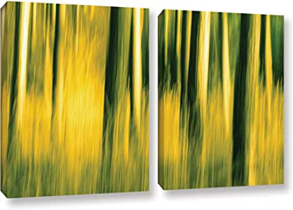"""ArtWall Lindsey Janich 'Camera Shake-2' 2 Piece Gallery-Wrapped Canvas Artwork, 24 by 36"""""""
