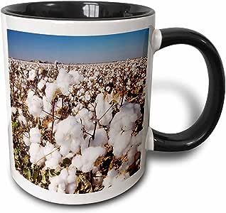 3drose danita delimont–农产品–棉质植物,农业, lubbock ,德克萨斯州–NA02rnu0522–rolf nussbaumer–马克杯 黑色/白色 11 oz