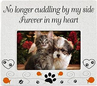 Home-X 猫宠物纪念相框,宠物丢失陶瓷相框,猫咪纪念纪念品,爱猫人士的爱情*礼物,家庭和办公室装饰,猫咪爱好者白色-15.24 厘米 X 17.78 厘米