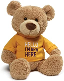 Gund 泰迪熊抱被 12 months to 1188 months Hello I'm New Here 12.5 inches