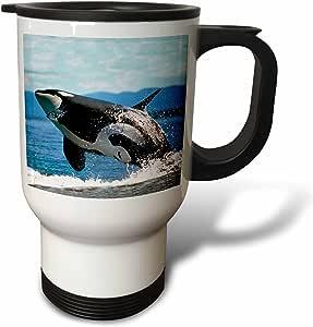 3dRose Killer Whale Airborne Travel Mug, 14-Ounce