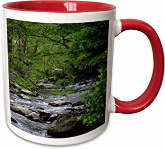 3drose whiteoaks 摄影艺术作品 – 自然风景 – smoky MOUNTAIN stream IS A 照片 OF A stream IN THE smokies – 马克杯 红/白色 11 oz
