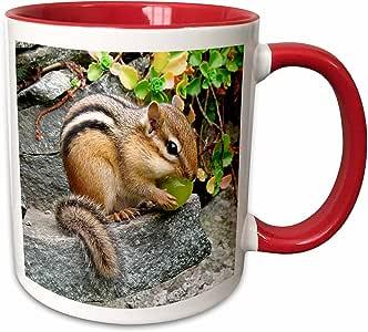"""3dRose mug_3109_5""""花栗鼠双色红色"""" 马克杯,311 盎司,红色/白色"""
