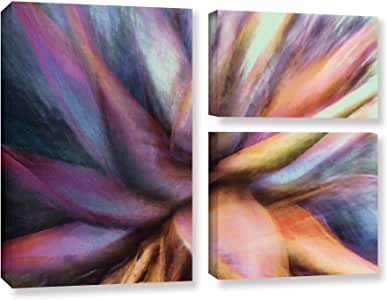 ArtWall Dean Uhlinger 3 件套 Nkeez 画廊包装帆布旗套装 36x48 0uhl060g3648w