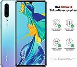 華為 HUAWEI P30 超感光徠卡三攝5倍混合變焦 6.1英寸OLED全面屏 6GB+128GB 雙4G手機+USB轉換頭 天空之境