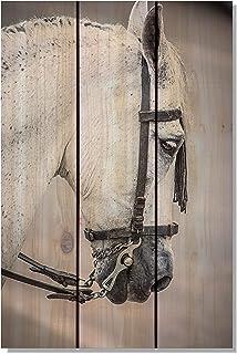 Gizaun Art Noble Steed 室内/室外墙壁艺术 16W x 24H in. 棕色 NS1624