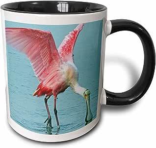 3drose florene birds–roseate spoonbill 粉红色 tropic 鸟–马克杯 黑色/白色 11-oz Two-Tone Black Mug