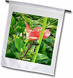 edmond hogge JR insects–螳螂–旗帜 12 x 18 inch Garden Flag