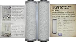 2 个过滤器,ALTON 品牌与 GE FX12P 相当的过滤器适用于 GXRM10RBL、PNRV12、GXRV10 RO 水系统,商业级,寿命更长