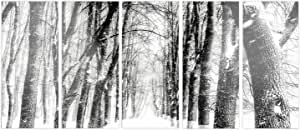 "Designart Snowy 森林黑白 - 现代森林光面金属墙壁艺术 60x28"" - 5 Equal Panels MT13939-401"
