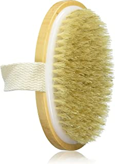 Fantasea 天然鬃毛身体刷,3.5 盎司 4片装