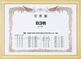 岩田 画框 *状画框 木质 树脂制框架 PET B3
