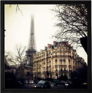 ArtWall Revolver Ocelot 'Paris' Floater Framed Gallery-Wrapped Canvas Art, 24 by 24-Inch