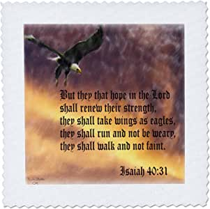 777 images Designs 图案设计圣经章节 – fear. isaiah 40 – 31圣经章节 with EAGLE AgAINST A troubled SKY – 方块拼布