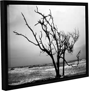 """ArtWall Steve Ainsworth's Hanging on Gallery Wrapped Floater Framed Canvas, 14 x 18"""""""