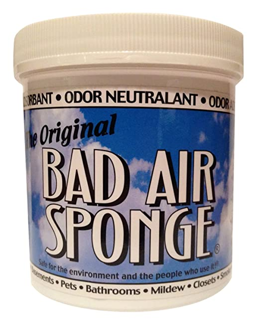 The ORIGINAL Bad Air Sponge吸收异味空气净化剂 14盎司