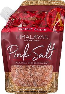 SaltWorks 古老海洋喜马拉雅粉色盐,精细,工匠倾倒袋,16盎司 Himalayan (Coarse) 16盎司