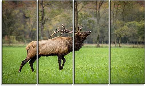 "Design Art Trophy Bull Elk in 绿色草原地 - 大号动物画布艺术品 48x28"" - 4 Equal Panels PT14069-48-28-4P"