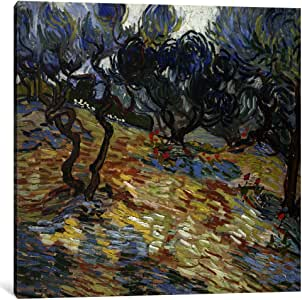 iCanvasART 14371-1PC3-12x12 Olive Trees Canvas Print by Vincent van Gogh, 0.75 by 12 by 12-Inch