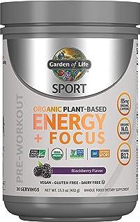 Garden of Life 生命花园 健身前能量聚焦素食能量粉,黑莓味,15.3盎司(432克)