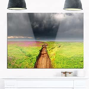 """Designart MT13113-271 花田的脏路-景观光面金属墙壁艺术 绿色 28x12"""" MT13113-28-12"""