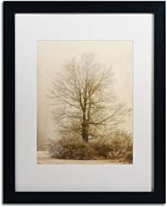 "Trademark Fine Art Tan Tones in the Fog Artwork by Lois Bryan, 16 by 20"", Black Frame, White Matte"