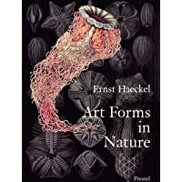 Art Forms in Nature: The Prints of Ernst Haeckel