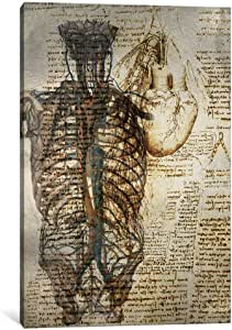 """iCanvasART 1 Piece Vitruvian Kardia Canvas Print by Ginger, 12 by 8""""/0.5"""" Deep"""