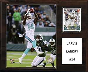 nfl miami dolphins jarvis landry player play,30.5 x 38.1 厘米