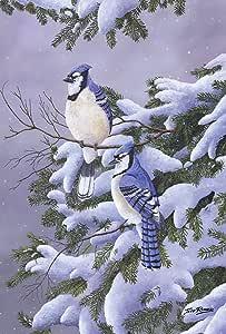 """Toland Home Garden 1110426 """"Two Blues Winter/Birds"""" Decorative Garden Flag Garden-Small-12.5x18-Inch"""