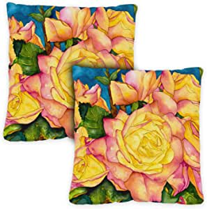Toland Home 花园阳光太阳花 Pillow Case (2-pack) 18 x 18 Inch Indoor Pillow Case Only (2-Pack) 781237