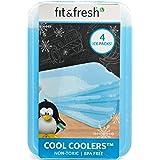 Fit & Fresh XL 冷冻器可重复使用的冰包,午餐盒、午餐袋和冷却器长期冰包,4 件套,蓝色