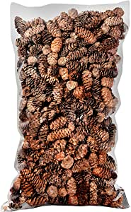 SuperMoss 24511 Black Spruce Pine Cones Natural Brown 400 in3 Bag (Appx. 19oz) 1-2 in