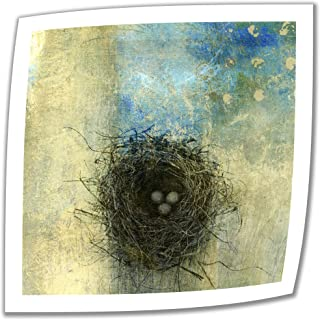 Art Wall Bird Nest Unwrapped Canvas Art by Elena Ray, 18 by 18-Inch