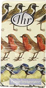 Boston International Ideal Home Range Pocket Tissues, Birds, 10 Count (Pack of 15)