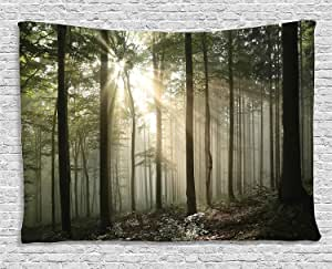 Ambesonne Farm House Decor Collection, Sunrise in the Early Autumn Deciduous Forest Wild Woodland Seasonal Picture, Bedroom Living Room Dorm Wall Hanging Tapestry, 80 X 60 Inches, Green Grey Black