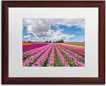 Trademark Fine Art Tulip Field Art by Pierre Leclerc in Wood Frame, 16 by 20-Inch, White Matte