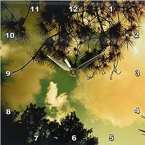 DPP _ 7802florene 云彩–scenic SKY–壁挂钟