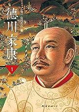 德川家康(第1部):龙争虎斗
