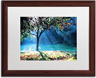 Trademark Fine Art Rays of Hope Artwork by Beata Czyzowska Young Wood Frame, 16 by 20-Inch, White Matte
