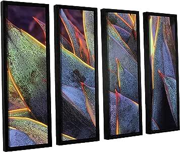 "ArtWall Dean Uhlinger 4 Piece Sun Succulent Floater Framed Canvas Set, 36 by 48"""