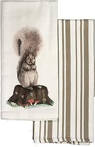 LaPrima Shops 厨房餐具毛巾 2 件套 * 纯棉,20 x 30 英寸 松鼠 20 x 30-Inch