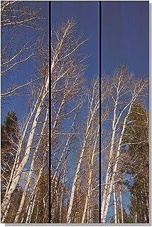 Gizaun Art Winter Aspens 内外壁画,雪松全色 棕褐色 16-Inch by 24-Inch WA1624