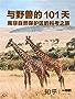 与野兽的 101 天:南非自然保护区的科考之旅(知乎 Orca 是只鲸 作品) (知乎「一小时」系列)