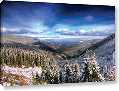 """ArtWall """"Dragos Dumitrascu's Winter Vision"""" Gallery Wrapped Canvas Artwork, 24"""" x 36"""""""