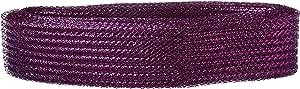 Homeford 华夫格网格装饰弹性丝带,2-1/2 英寸,20 码 紫色 2-1/2-英寸 FNS000007239PURP