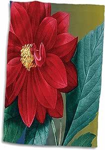 3dRose 3D 玫瑰红斑马花卉复古花手/运动毛巾,15 x 22