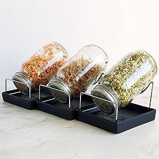 Seed Sproute 罐套装 - 3 个 Sprouter Mason 罐带屏幕盖支架和托盘 - Sprout 诱饵器套装,种子自制牛皮 Microgreens Beans Sprouts