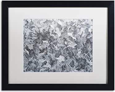 "Trademark Fine Art Frost Mosaic by Kurt Shaffer Artwork, 16 by 20"", White Matte/Black Frame"