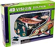 Famemaster 4D-Vision 海豚解剖模型
